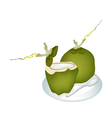 Two Green Coconuts on A White Plate vector image