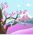 china spring landscape with sakura blossom on tree vector image vector image