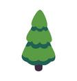 green christmas fir tree flat icon vector image