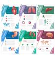 internal human organs infographic spleen vector image