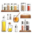 kitchen herbs spices realistic set vector image vector image
