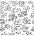 seamless pattern with nuts and seeds vector image vector image
