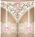 white lace lingerie vector image vector image