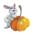 cute rabbit with pumpkins isolated on white vector image