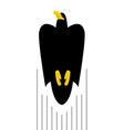 Flight of Black Hawk Bird flies to top of predator vector image vector image
