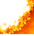 Background of the leaves vector image