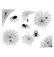 spiders web silhouette spooky spider nature vector image