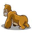 brown gorilla vector image