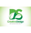 ds green leaf letter design logo eco bio leaf vector image vector image