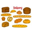 Fresh bread and buns icons for bakery shop design vector image