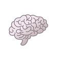 human brain icon symbol intellect study vector image vector image