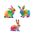 rabbit low poly design vector image vector image