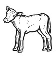 veal icon hand drawn style vector image vector image