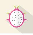 Dragon Fruit Part Flat Design vector image