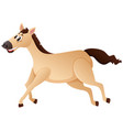 brown horse running on white background vector image vector image