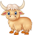 Cartoon cute yak isolated on white background vector image vector image