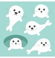 Harp baby seal pup set Ice-hole Cute cartoon vector image vector image