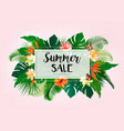 hot summer sale background with exotic leaves and vector image vector image