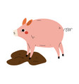 pig in dirty puddle agriculture farm animal vector image