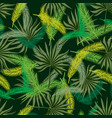 tropical pattern with two kinds of palm branches vector image vector image