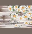 vintage chamomile bouquet spring floral vector image