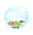 aquarium with fishes vector image vector image