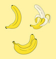 bright beautiful set with bananas vector image vector image