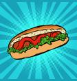 hot dog salad ketchup vector image