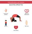 infographics of yoga pose infographics of yoga vector image