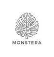 monstera outline logo icon vector image vector image