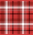 red tartan fabric texture vector image vector image