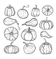 set decorative black and white pumpkins hand vector image