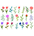 set watercolor doodle flowers vector image