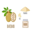 Superfood baobab set in flat style vector image