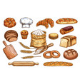 bakery bread and pastry cakes sketch vector image
