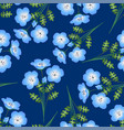 nemophila baby blue eyes flower on indigo vector image