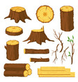 wood logs firewood tree stumps with rings vector image