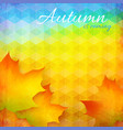 Abstract autumn bright background vector image vector image