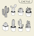 Cactus Hand Drawn vector image