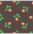 seamless pattern with pot and plant on a brown vector image vector image
