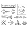Beauty and Care logo Templates vector image vector image