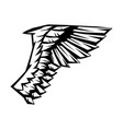 birds or angelic wing vector image