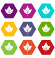 currant tree leaf icon set color hexahedron vector image vector image
