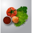 fresh green lettuce tomato and onion vector image vector image