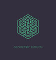 geometric emblem vector image vector image