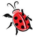 ladybug drawing on white background vector image