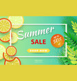summer sale background layout for banners vector image vector image