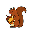 autumn season squirrel acorn forest vector image vector image