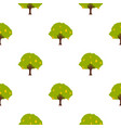 big tree with fruit pattern flat vector image vector image