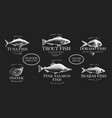 labels with seafood retro set templates price vector image
